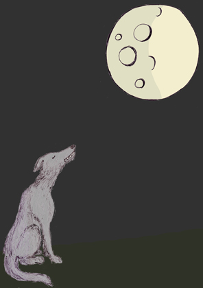 Full Moon Empty Head
